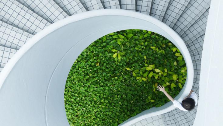 Abstraktes Bild: Weiße Wendeltreppe von oben, in der Mitte grün
